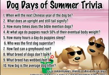 Dog Days of Summer Trivia
