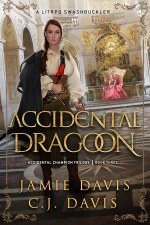 Accidental Dragoon LitRPG Fantasy Book