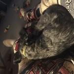 Peggy-Lap-Sleep