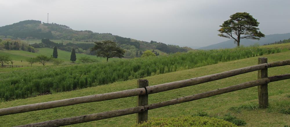 Takachihono