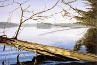 'Early Morning, Salmon Lake' (2005) by Jamie Kapitain