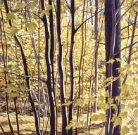 'Autumn Cottage Drive, Salmon Lake' (2005) by Jamie Kapitain.