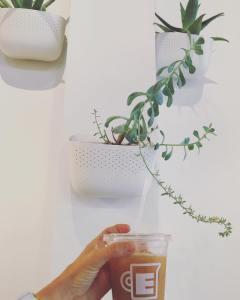 Evocation Coffee - Amarillo, Texas