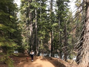 Trail running Bend