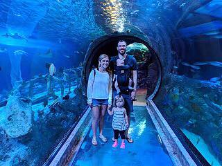 Dallas aquarium travel kids