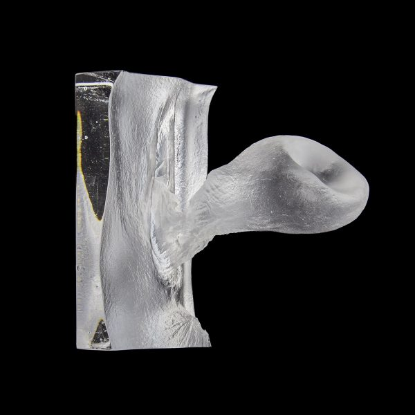 glass cast of the inside of a vagina