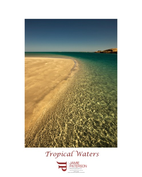 varanuswater1