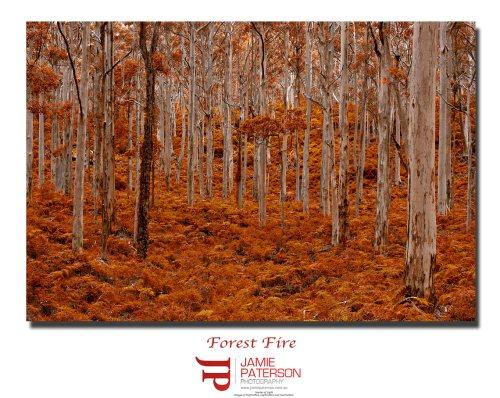 landscape photographer, australian photographer, south west,