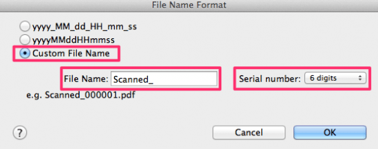 Scanned File Name