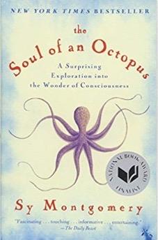 Soul of an Octopus