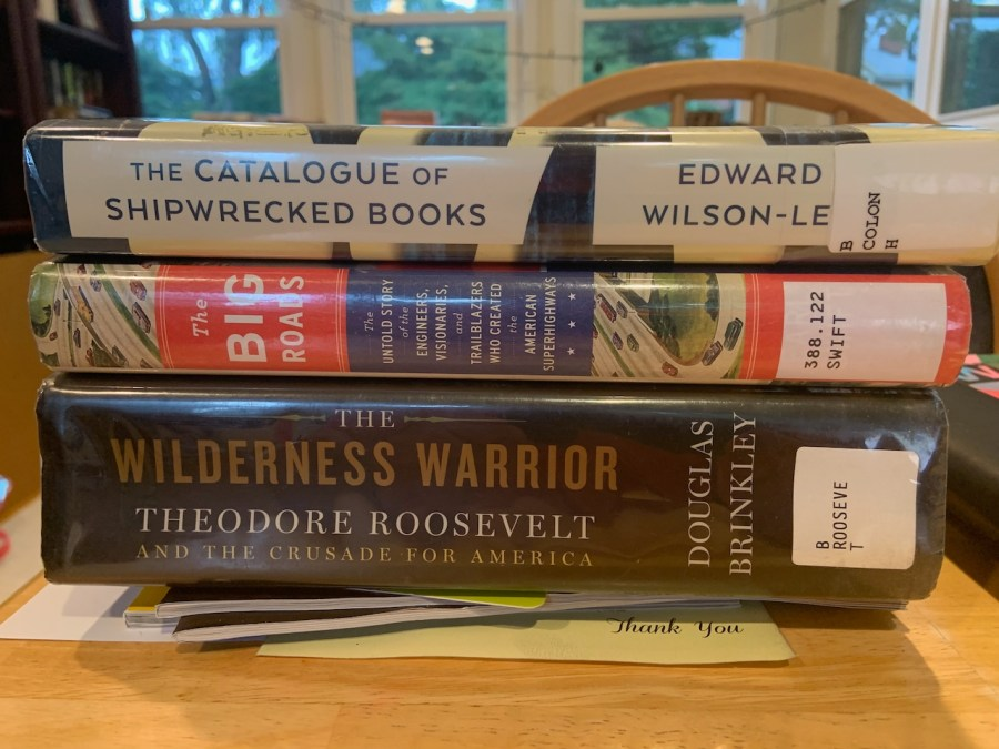 the stack of books I got from the library