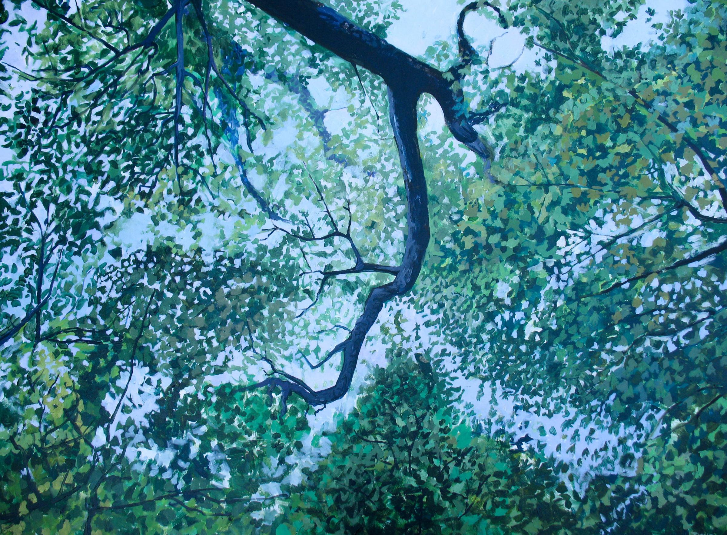 25-jamie-treacy-the-fleeting-canopy.jpg
