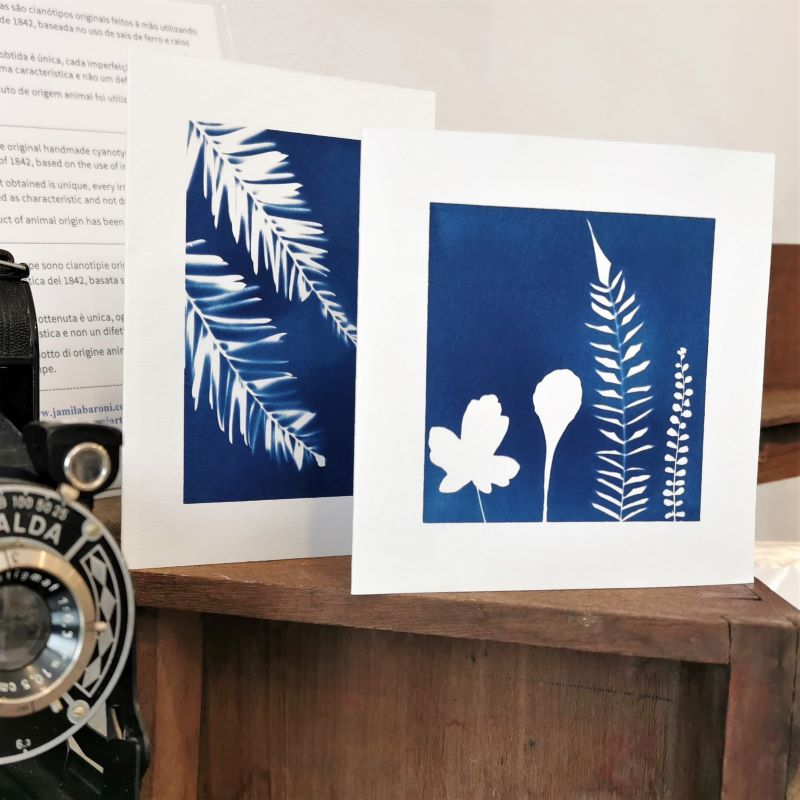 Cyanotypes inside the shop in Rua da Veronica 28 in Lisbon that sells fashion, second-hand, retro and vintage clothes, retro and vintage clothes rental, jewelry, crafts, art, art prints, artists exhibition.