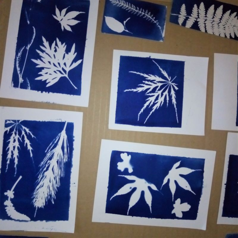 creative workshop with the ancient technique of cyanotype of the artist Jamila Baroni