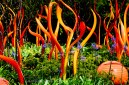 chihuly-30a