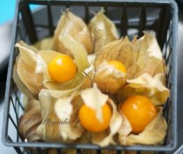 Physalis (peruvian cherry or cape gooseberry)