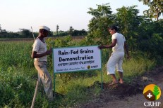 CRHP's Rajanikant Arole Demonstration Farm now boasts seven central demonstrations that lend a particular focus upon tree farming and animal husbandry. The guesthouse has been refurbished and now allows up to seven visitors to stay overnight at the farm. Through simple additions such as additional signage the demonstration farm is a far more visual experience for visitors.