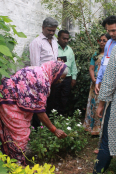 Lalanbai, a Village Health Worker, discusses herbal medicine with students from Bangalore.