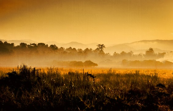Misty morning and a yellow hue pervades the valley north of Chiang Mai
