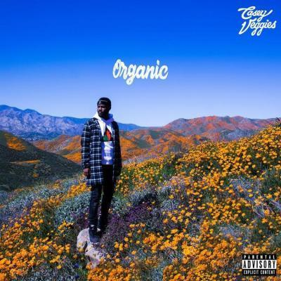 Casey Veggies ft The Game - Candy