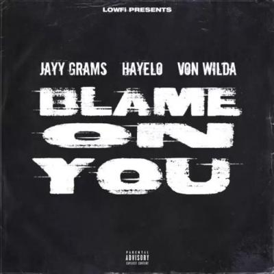 lowfi blame on you