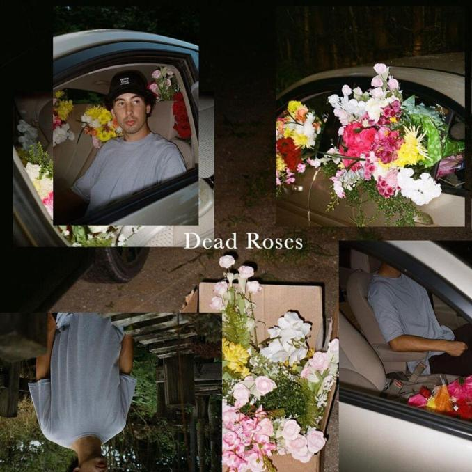 Ollie Dead Roses MP3 DOWNLOAD