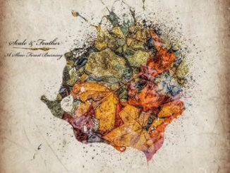 Scale & Feather A Slow Forest Burning ALBUM ZIP DOWNLOAD