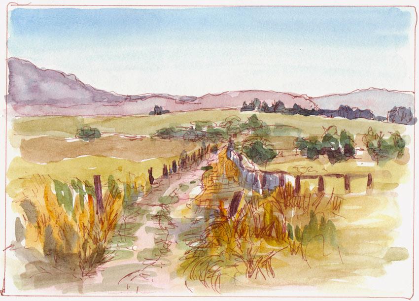 Rush Ranch Vista, ink & watercolor wash