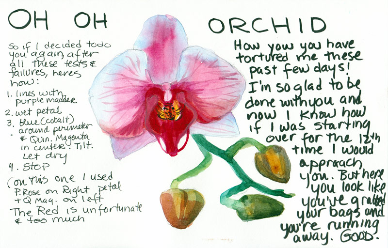 Oh Oh Orchid!