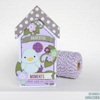 Springtime Birdhouse Box