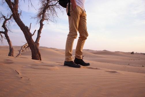 wüste2