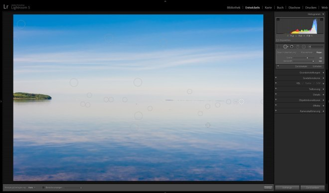 Tutorial-Lightroom5-Sensorfleck-entfernung-5