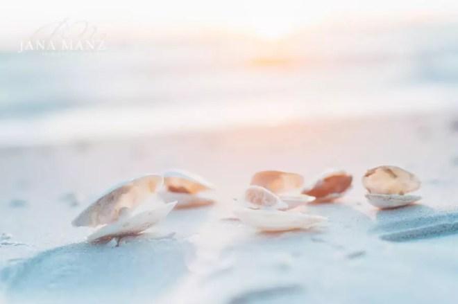 EOnlinekurs Spezial: Bessere Urlaubsfotos - Tipps & Tricks vom Profi Persönlich und individuell: Ich verrate dir die besten Tipps für deine Urlaubsfotos