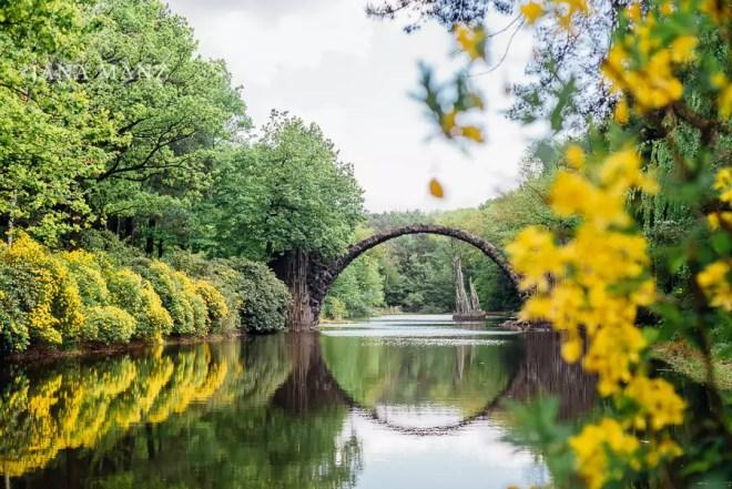 26.5. Blütenträume 2018 Kromlauer Park/Fürst Pückler Park Rhododendron /Azaleenblüte 10:00 – 18:00 UhrFür alle die Rhododendron- und Azaleenblüten lieben, ist dieser Tagesworkshop ein Muß. Es erwartet dich aber nicht nur eine Vielzahl an blühenden Rhododendren und Azaleen, sondern auch die berühmte Rakotzbrücke.