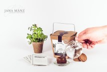 Wald & Co Samenboxen - Seed boxes