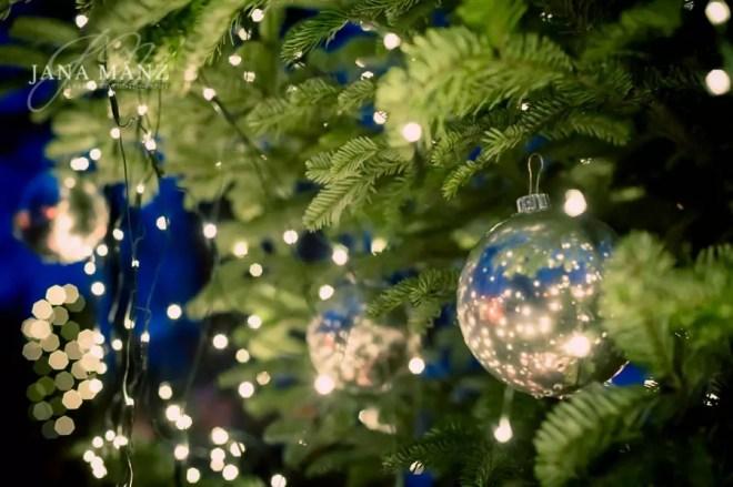 Weihnachten, Weihnachtsbaumplantage, Weihnachtsbaum, Tannenbaum, Sachsen, Deutschland