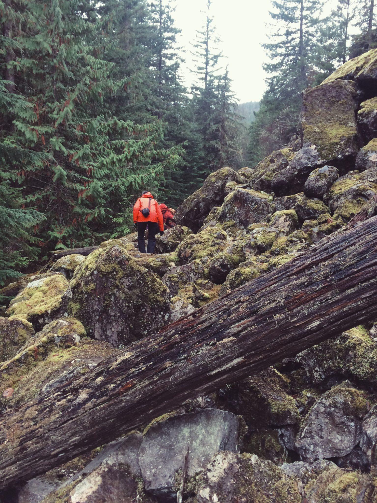 jana meerman brandywine falls base hike