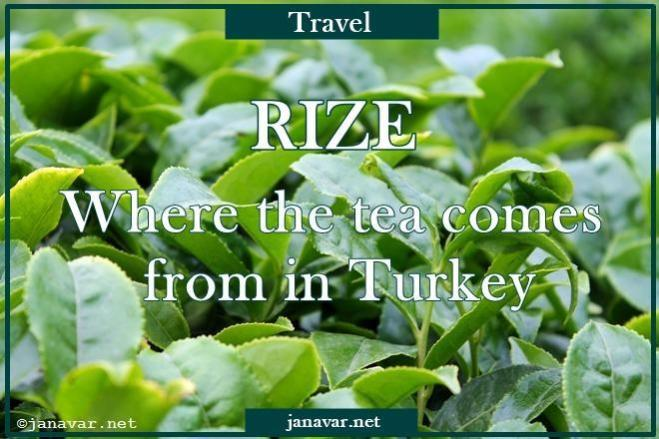 Travel: Rize – Where the tea comes from in Turkey