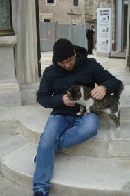 Mačke Istanbula