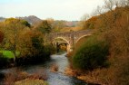 Tarka trail near Riddlecombe