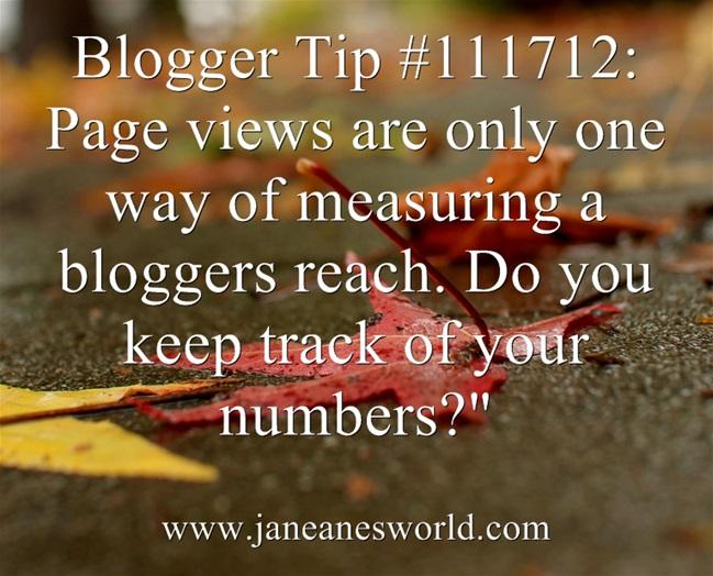 www.janeanesworld.com track page views