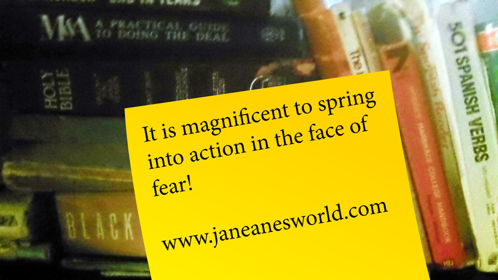 Magnificent Monday,spring into action, take action now, TAN, fear, courage, just do it
