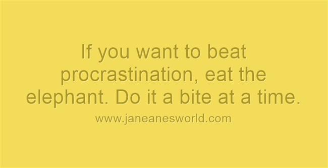 beat procrastination - eat the elephant www.janeanesworld.com