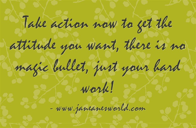 new attitude www.janeanesworld.com