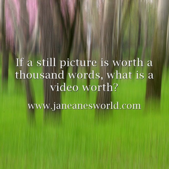 value of video www.janeanesworld.com
