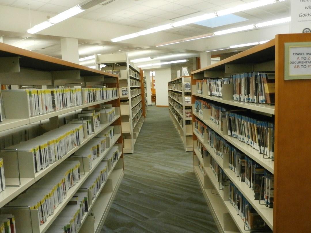 library books www.janeanesworld.com