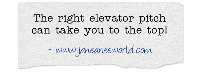elevator pitch www.janeanesworld.com