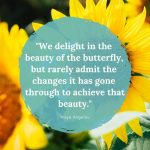 We delight in the beauty of the butterfly