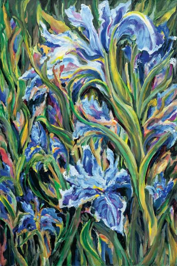 Iris Dance 24 x 36 Limnited Giclee Print on Canvas  $500