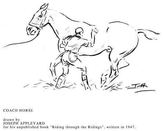 coach Horse, Joseph Appleyard 1947